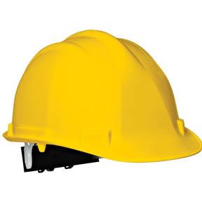 Dickies PPE